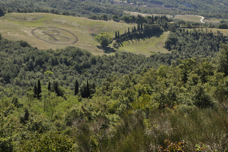 The mark with the particular variety of plants in Val d'Orcia